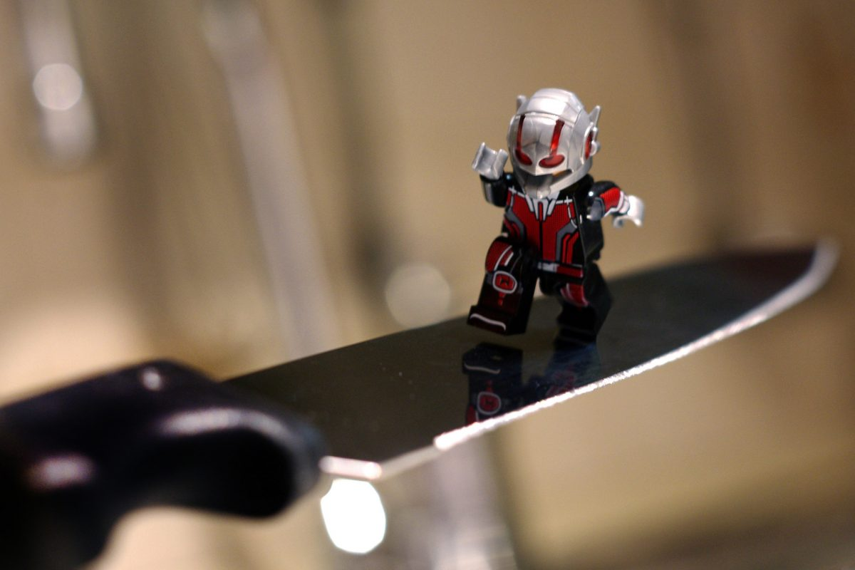 Brick Pic Ant Man