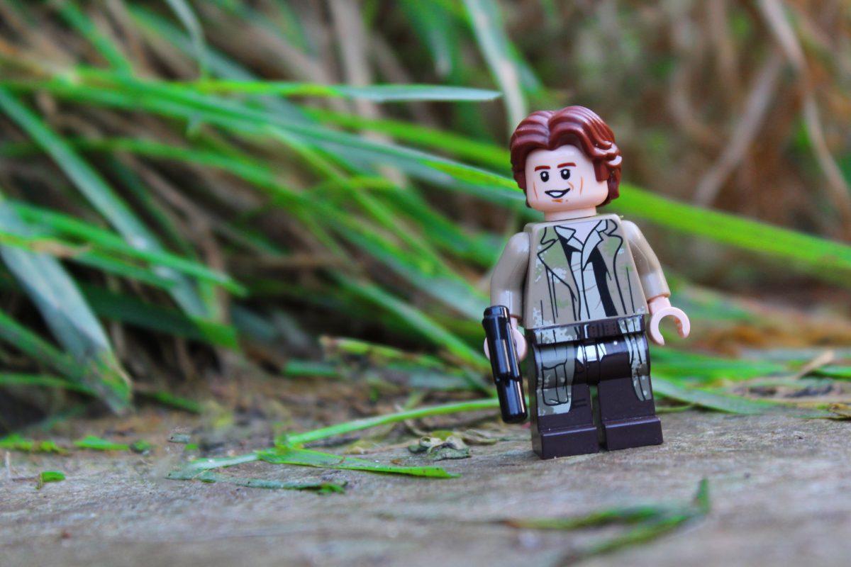 Brick Pic Han Solo Endor