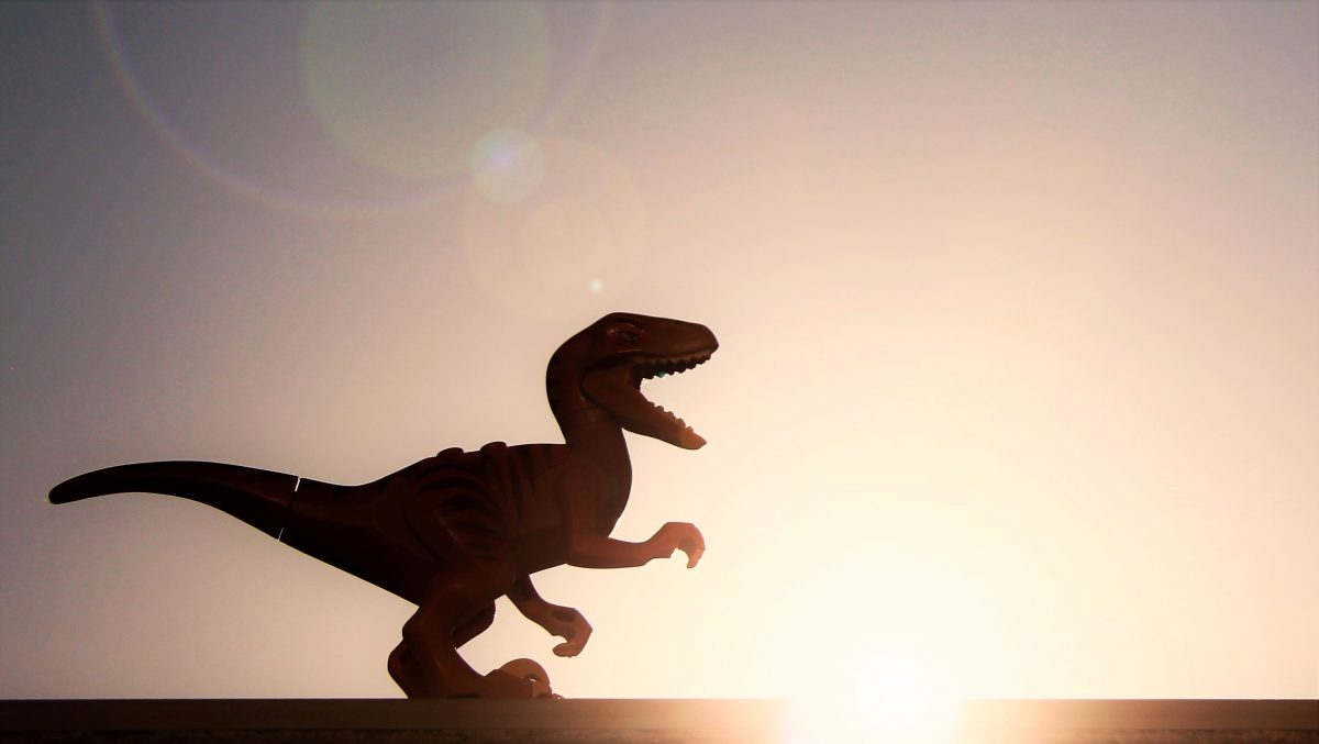 Brick Pic Raptor