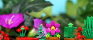Brick_Pic_gardening