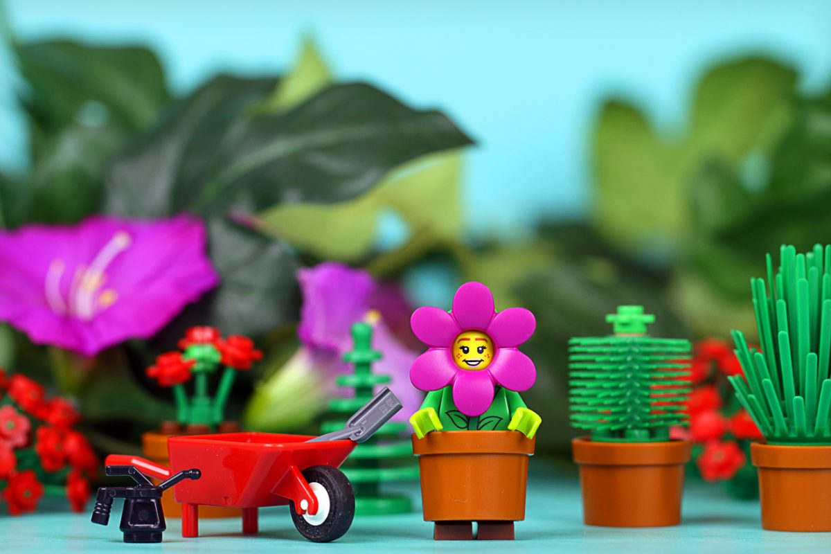 Brick Pic Gardening