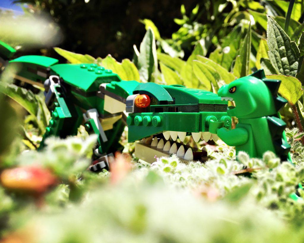 Brick_Pic_Lizards