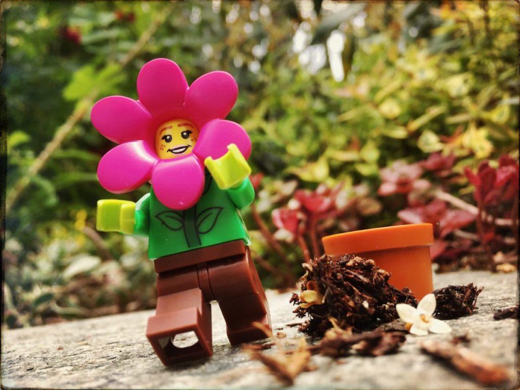 Brick Pic Wildflower