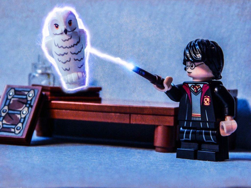 Brick Pic Harry Hedwig