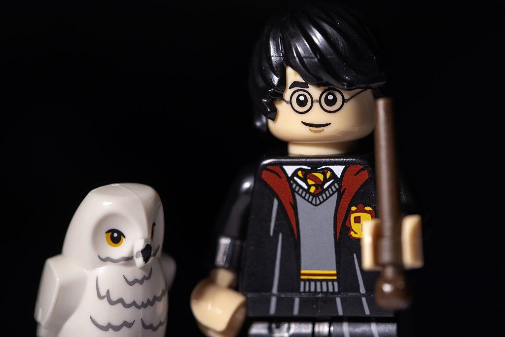 Brick Pic Harry Hedwig 1024x683
