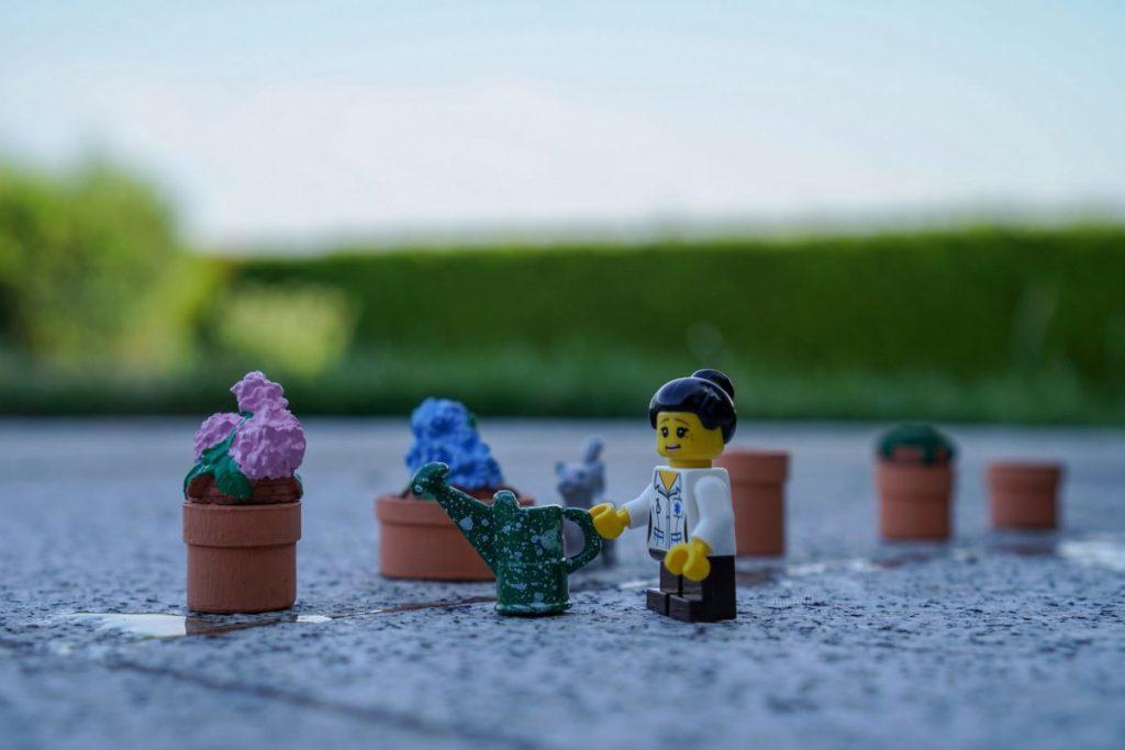 Brick Pic Watering Flowers