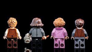 LEGO Fantastic Beasts 75952 Newts Case Magical Creatures 16 300x169