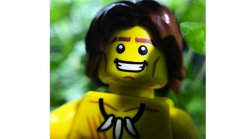 Brick Pic Jungle Featured 880 445