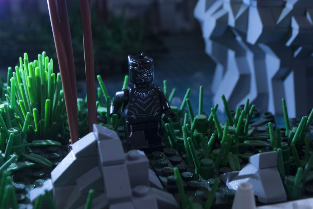 Brick Pic Black Panther 1024x686