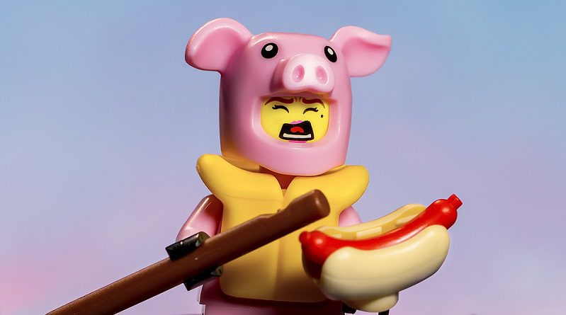 Brick Pic Pig At Sea Featured 800 445 799x445