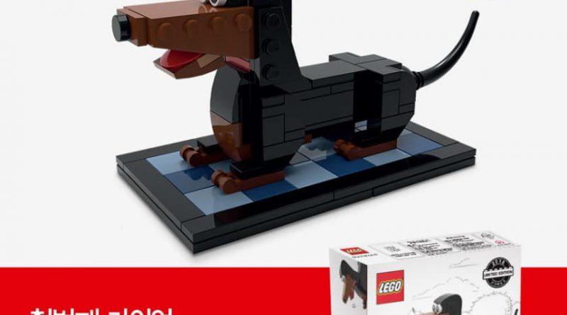LEGO Puppy 1 800x445