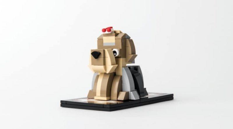 LEGO Puppy 2 Loose 800x445