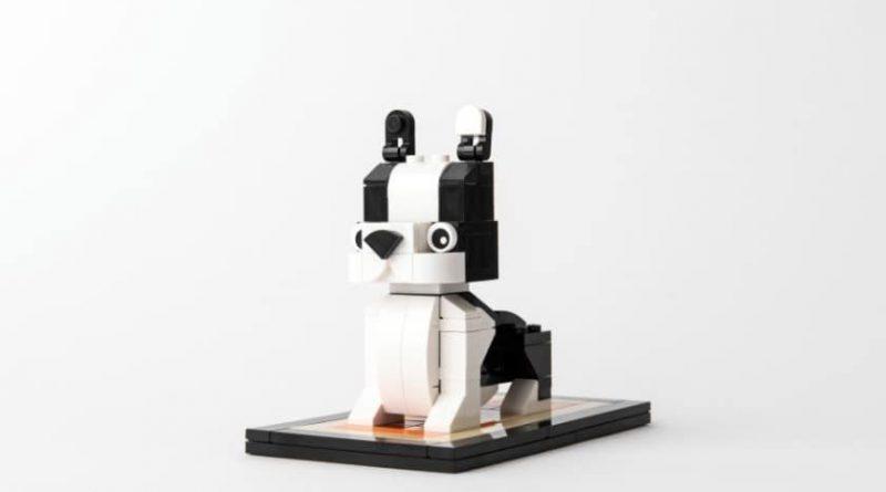 LEGO Puppy 3 Loose 800x445