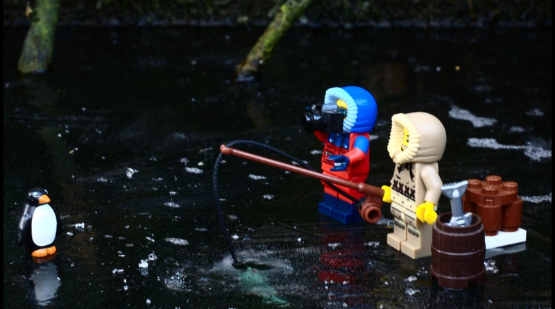 Brick Pic Fishing Penguin Featured 800 445