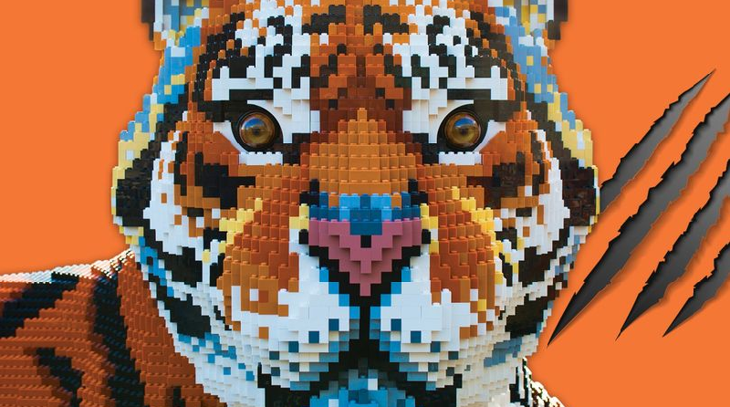 LEGO Tiger Featured 800 445