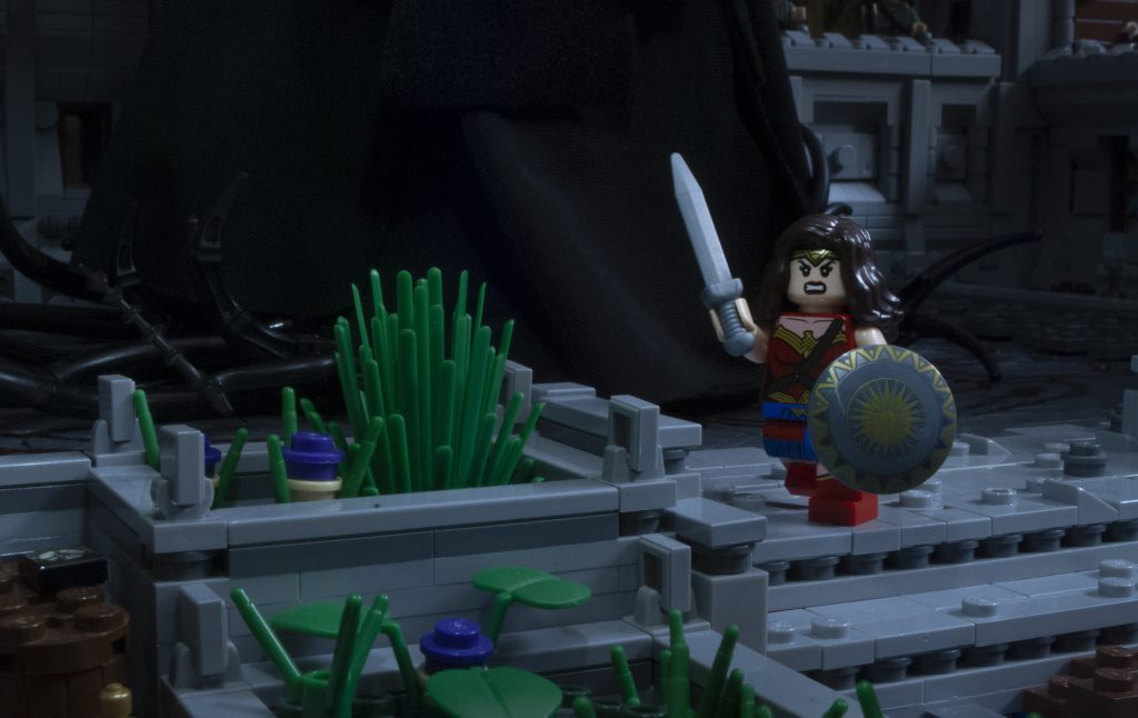 Brick Pic Wonder Woman 1024x646