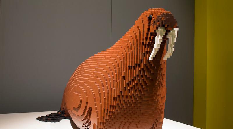 Horniman LEGO walrus featured 800 445