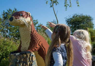 LEGO brick animal trail coming to Martin Mere Wetland Centre
