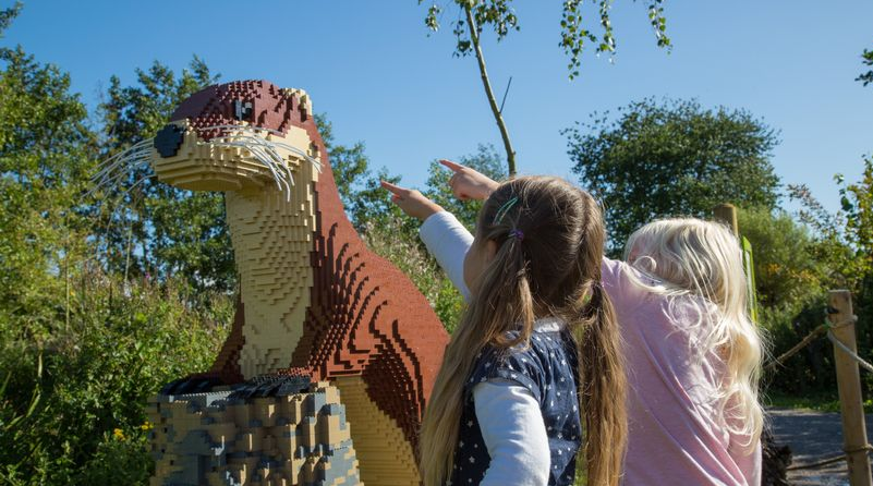 Wetland Centre Lego Nature Trail Featured