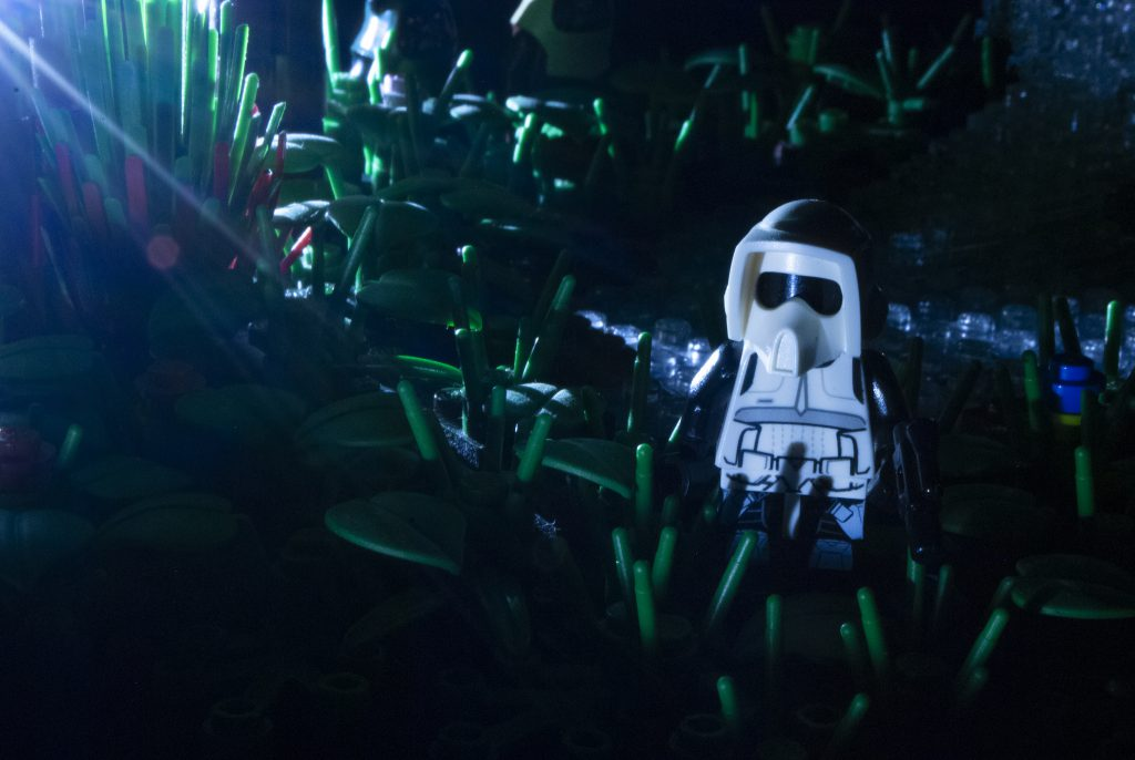 Brick Pic Endor Night 1024x686