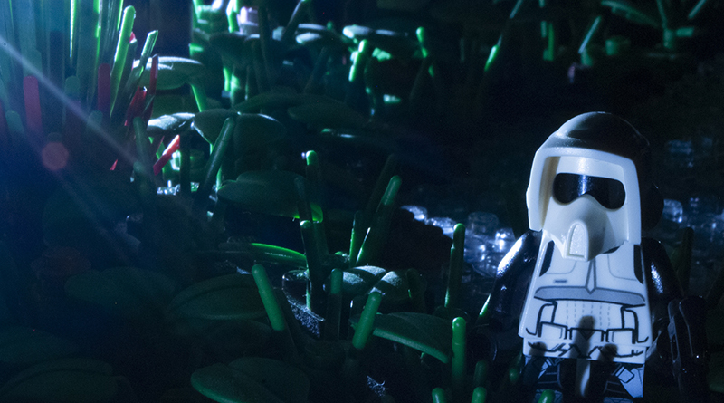 Brick Pic Endor Night Featured 800 445