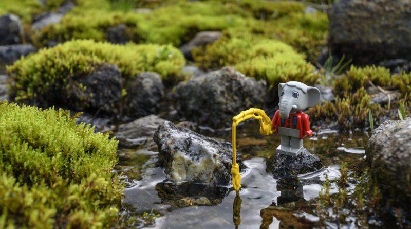 LEGO Fishing e1552949040514