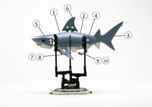 LEGO Shark Numbers 300x212