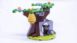 tree cave