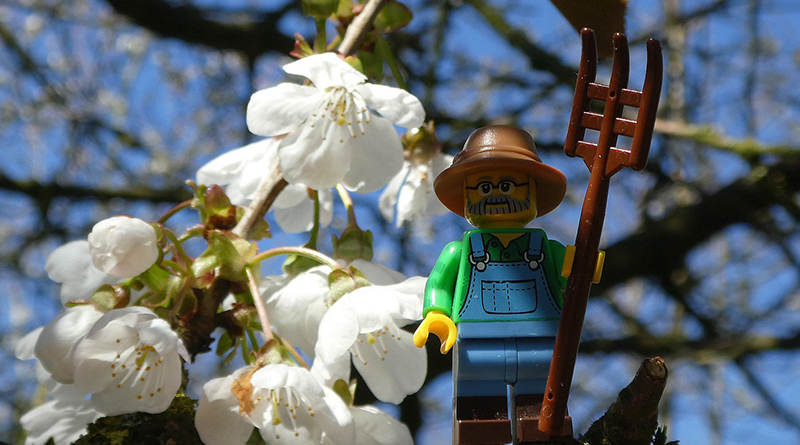 Brick Pic Outdoor Life Featured 800 445