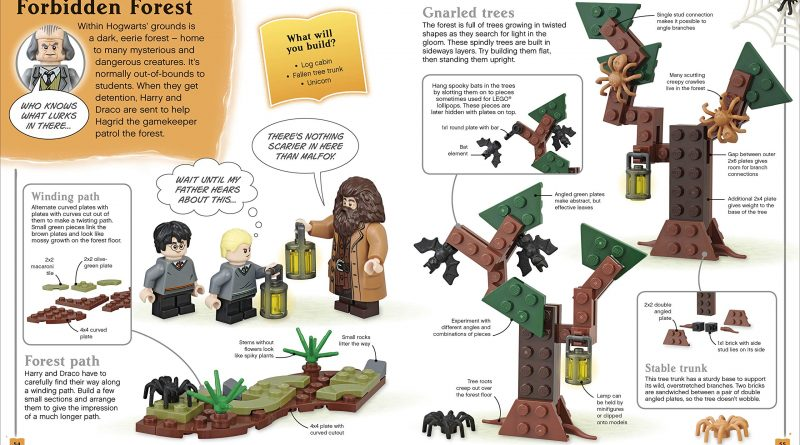 LEGO Harry Potter Build Your Own Adventure 6