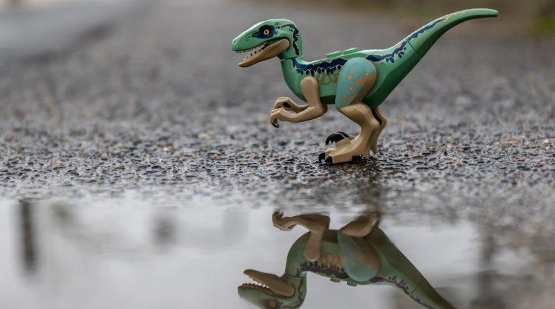 LEGO Raptor E1559025662897