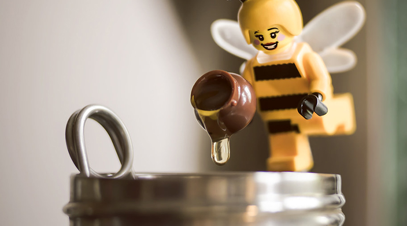 Brick Pic Bee Featured 800 445