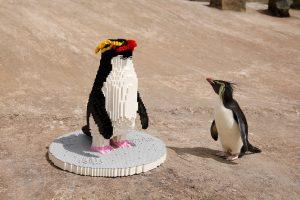 LEGO Penguin BRICKLIVE Ocean 3 300x200