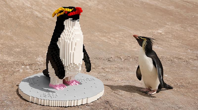 LEGO Penguin BRICKLIVE Ocean Featured 800 445