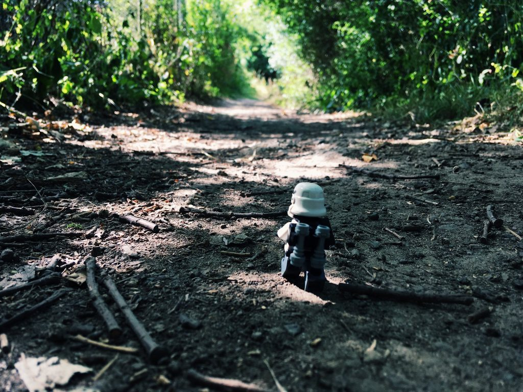 Brick Pic Trooper Walk 1024x768