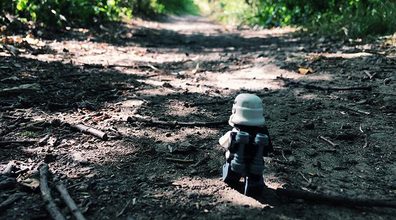 Brick Pic Trooper Walk Featured 800 445
