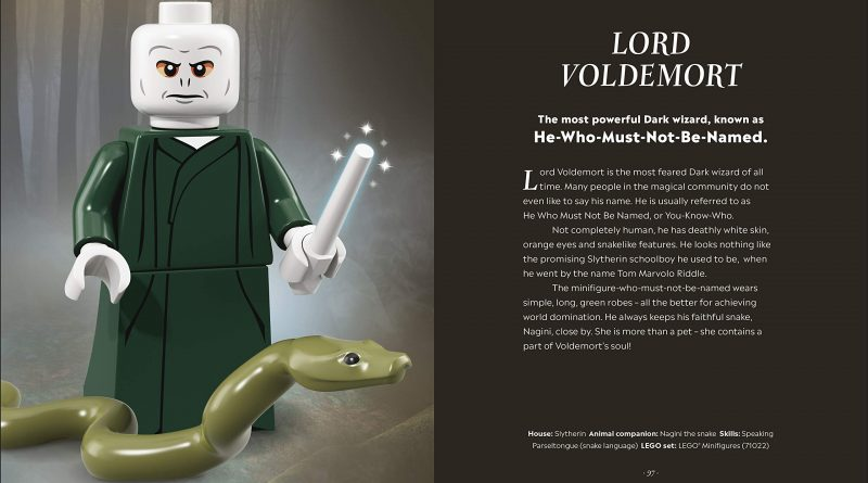 LEGO Harry Potter Magical Guide Wizarding World 12 800x445