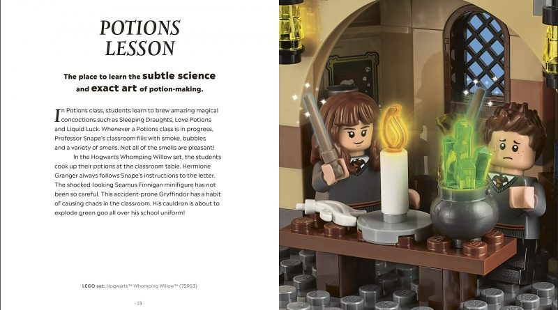 LEGO Harry Potter Magical Guide Wizarding World 6 800x445