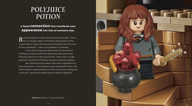 LEGO Harry Potter Magical Guide Wizarding World 9 800x445