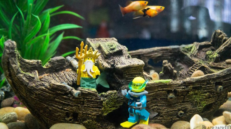 LEGO Aquarium E1565650867350
