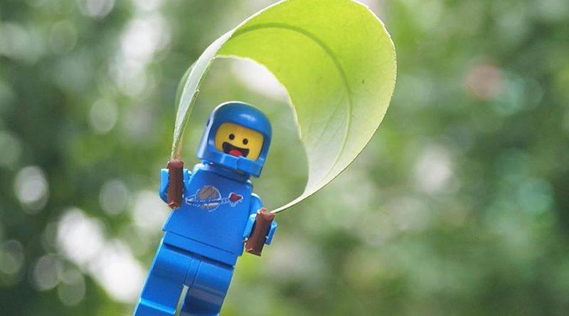 Brick Pic Benny Flies Featured 800 445 800x444