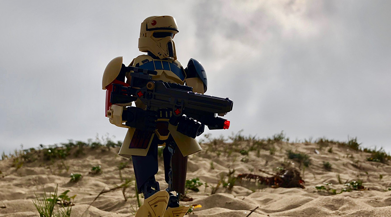 Brick Pic Shoretrooper Featured 800 445