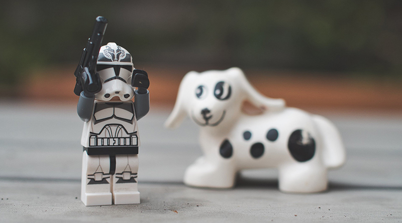 Brick Pic Wolf Pack Featured 800 445