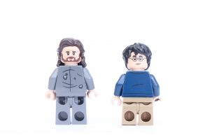 LEGO Harry Potter 75945 Expecto Patronum 8 300x200