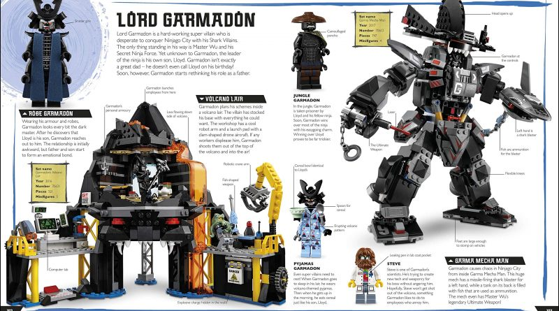 The LEGO NINJAGO Visual Dictionary New Edition 6 800x445