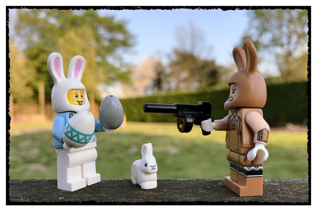 Brick Pic Bunny Shoot Out 1024x683