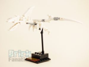 LEGO Ideas 21320 Dinosaur Fossils review