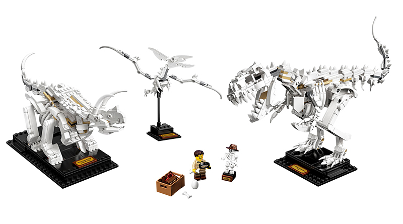 LEGO Ideas 21320 Dinosaur Fossils Official Featured 800 445