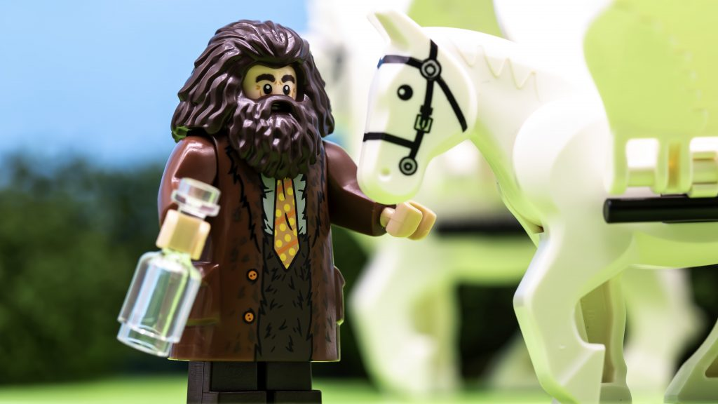 Hagrid And Horse 1024x576