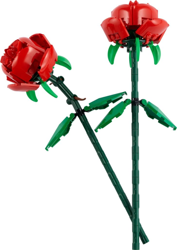 40460 Roses 1